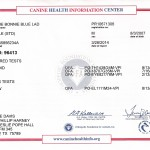 Lad....OFA CHIC Certificate